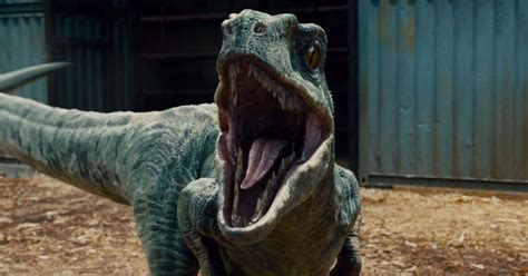 Jurassic World Review: One of the Most Exciting Movies